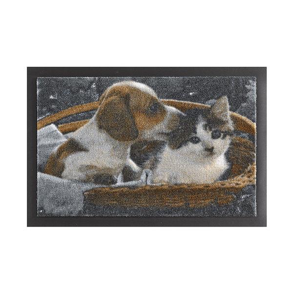 Design deurmat - Lucky Hond en Kat Bruin Wit