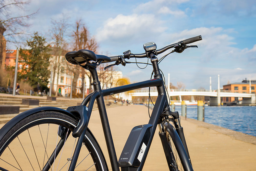 E Bike Schloss I LOCK IT- Fahrradschloss für E Bike Schutz