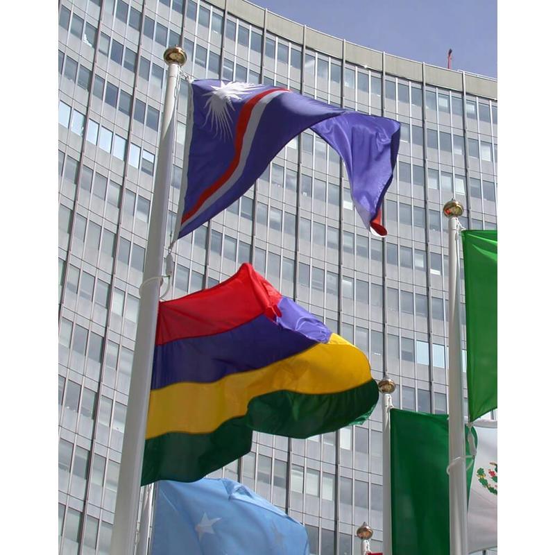 Polyester vlaggenmast met lierbediening (ISS Exclusief)