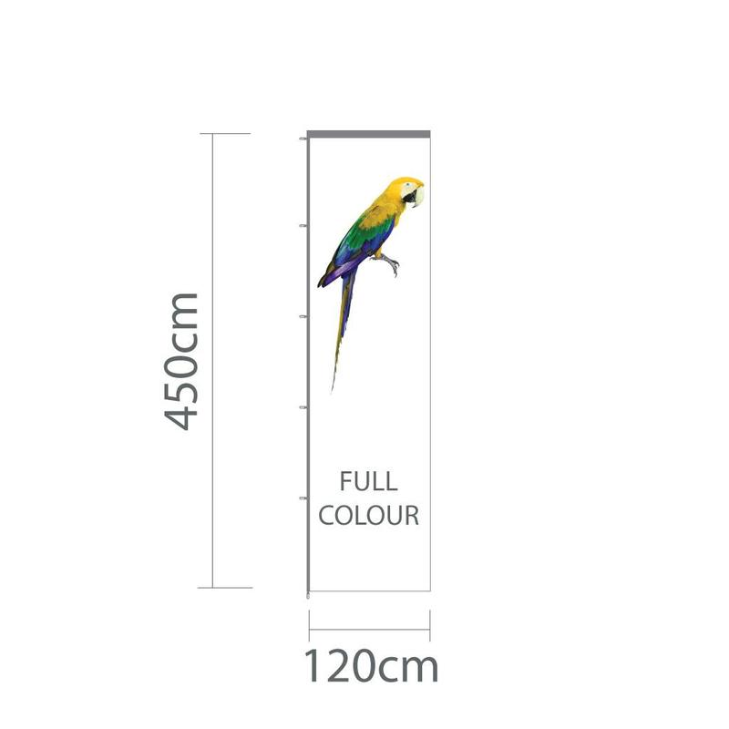 Baniervlag, full colour, 120x450cm