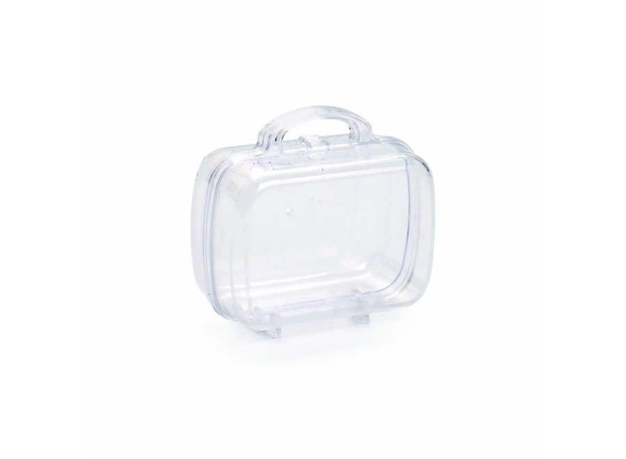 SMALL TRAVEL BAG – CLEAR