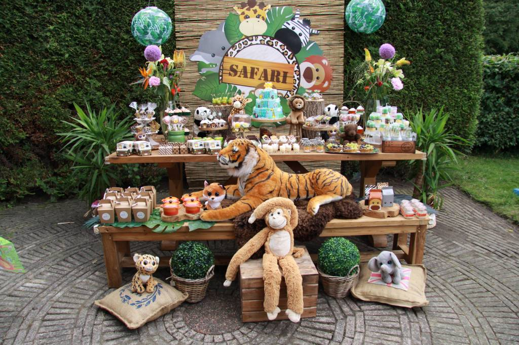 Festa Safari – Henk 3 anos & Abertura da Empresa JollyJoy