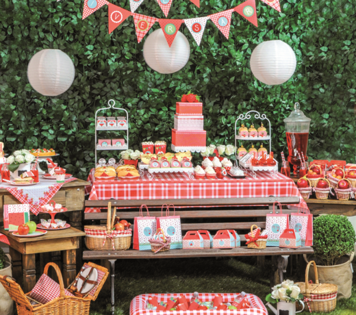Themafeest Picknick | Voor Kinderfeestjes | Verjaardag vieren  | Baby shower versieringen