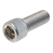 Allen bolt Stainless Steel 1/4 UNF - 28 x 1 inch