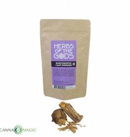 Herbs of the Gods - Banisteriopsis caapi - Ourinhos