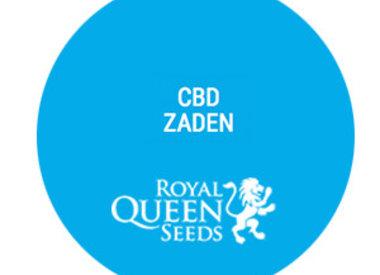 CBD cannabis zaden