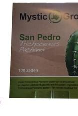 San Pedro Trichocereus Pachanoi zaden