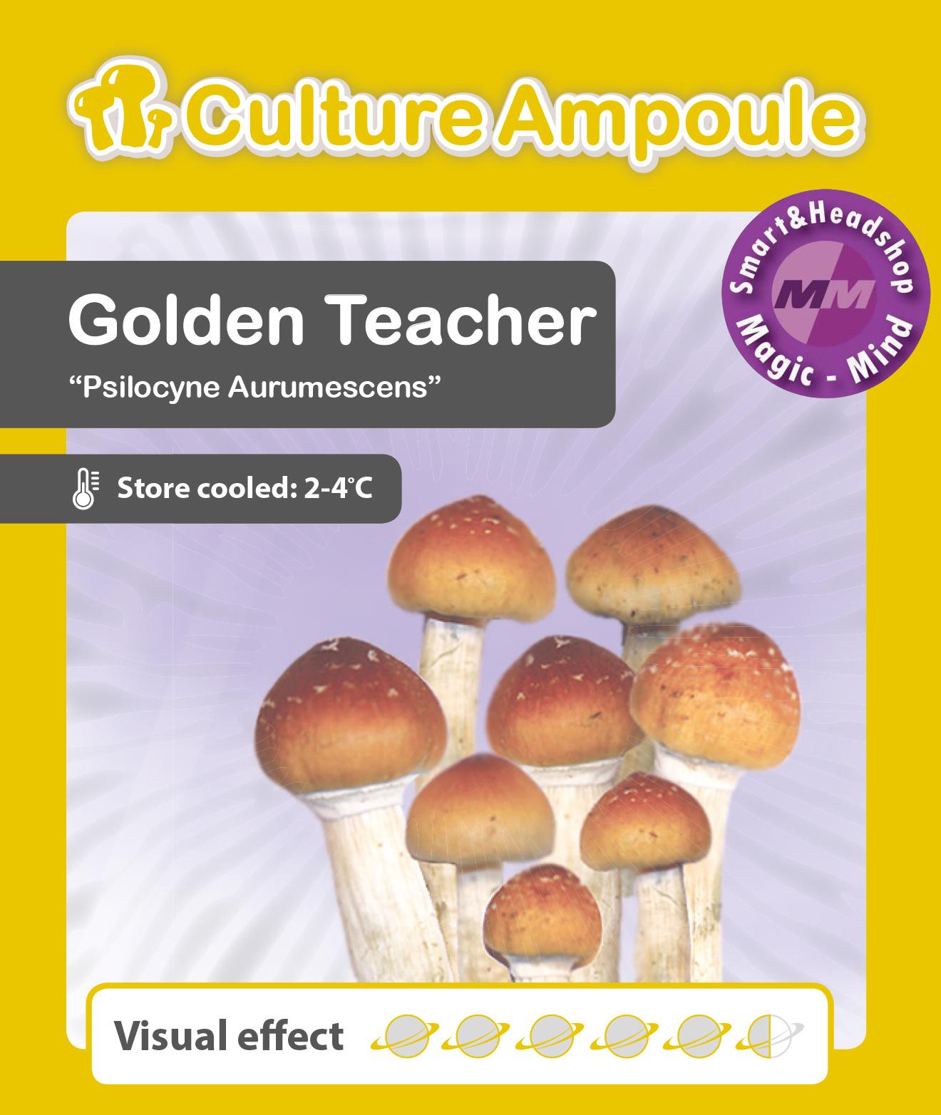 Culture Ampoule Set Golden Teacher Mushroom Spore