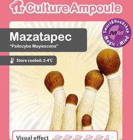 Culture Ampoule Set Mazatapec Mushroom Spore