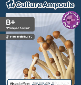 Culture Ampoule Set B+ Mushroom Spore