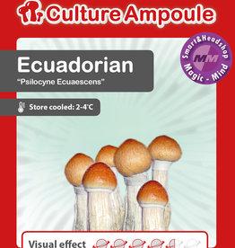 Culture Ampoule Set Ecuadorian Mushroom Spore