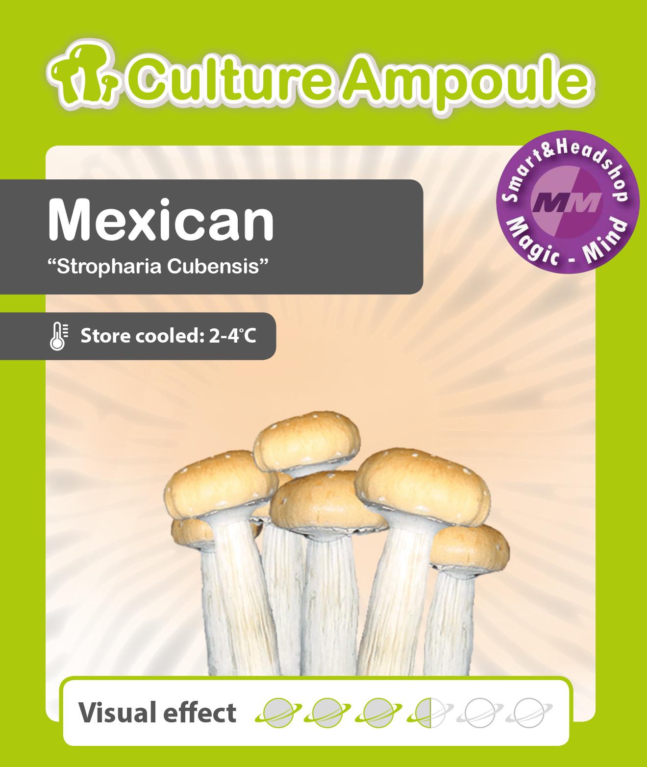 Culture Ampoule Set Mexican Mushroom Spore