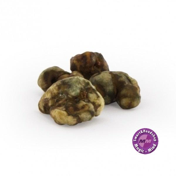 Mush magic Valhalla  Psilocybe 15 gram