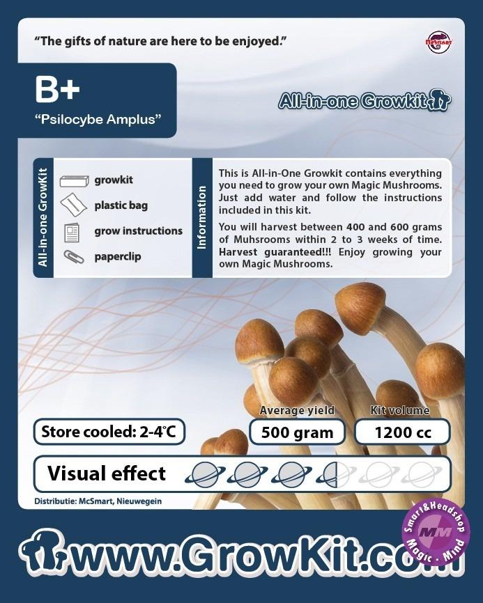 B Plus Growkit - 1200 cc B Plus Growkit - 1200 cc
