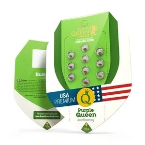 Royal Queen Seeds Purple Queen Automatic