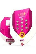 Royal Queen Seeds AMG - Amnesia Mac Ganja