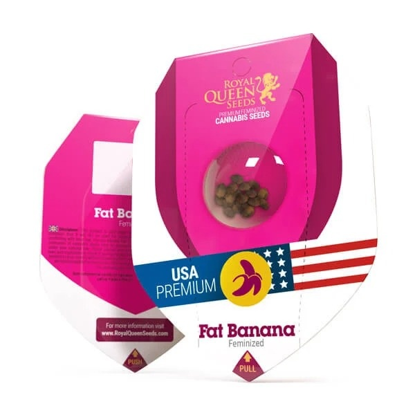 Royal Queen Seeds Fat Banana