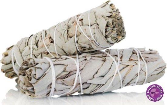 Witte Salie - white sage