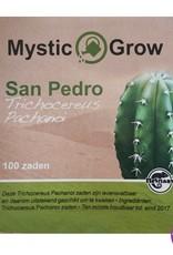 San Pedro Peruvianus (Trichocereus Peruvianus) seeds