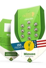 Royal Queen Seeds Mimosa Automatic