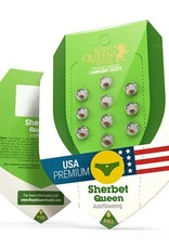 Royal Queen Seeds Sherbet Queen Automatic