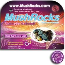 MushRocks