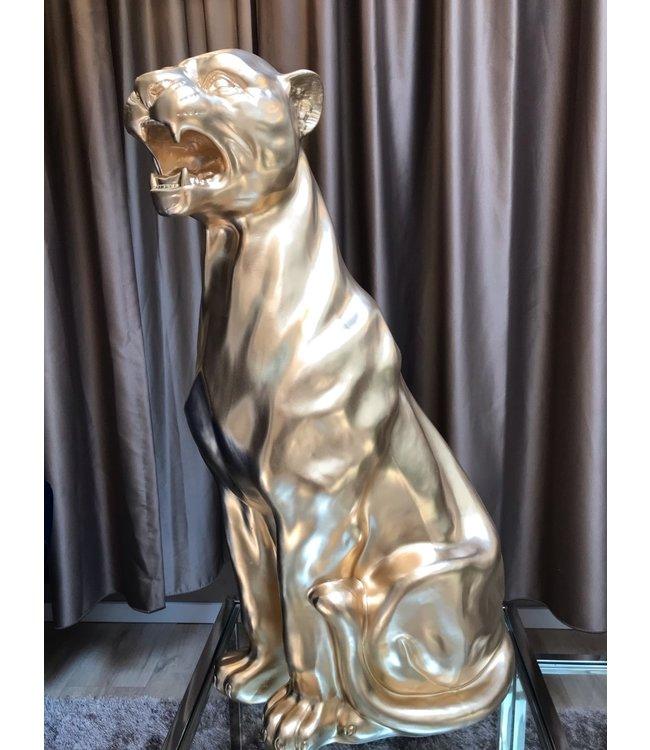 Tiger Zila - Gold