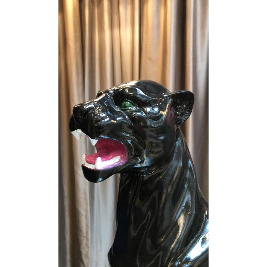 Tiger Zila - Black