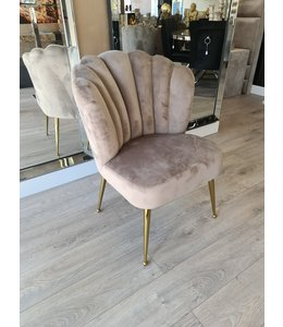shell chair Amor taupe