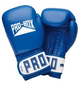 Probox Pro Box Blue Leather Boxing Gloves