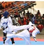 Tusah WTF Approved Taekwondo Shin Guards