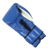 Cleto Reyes Cleto Reyes Boxing Gloves Blue