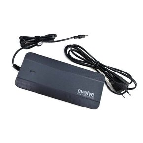 Evolve Fast Charger
