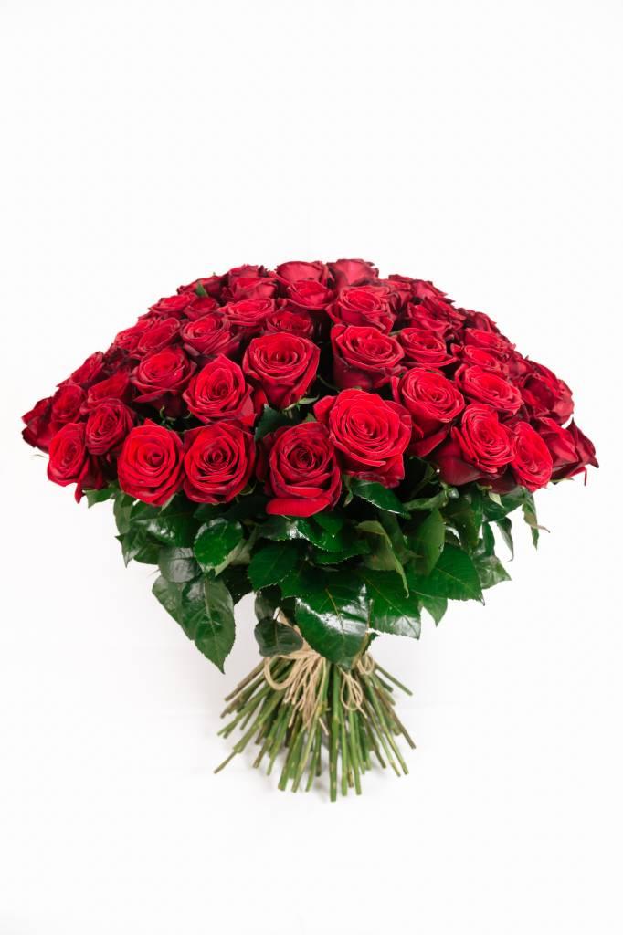 Red Naomi Rode rozen