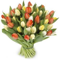 met  een boeket gemengde tulpen
