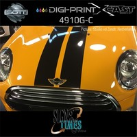thumb-DP-4910G-C-152 DigiPrint X-Cast™-5
