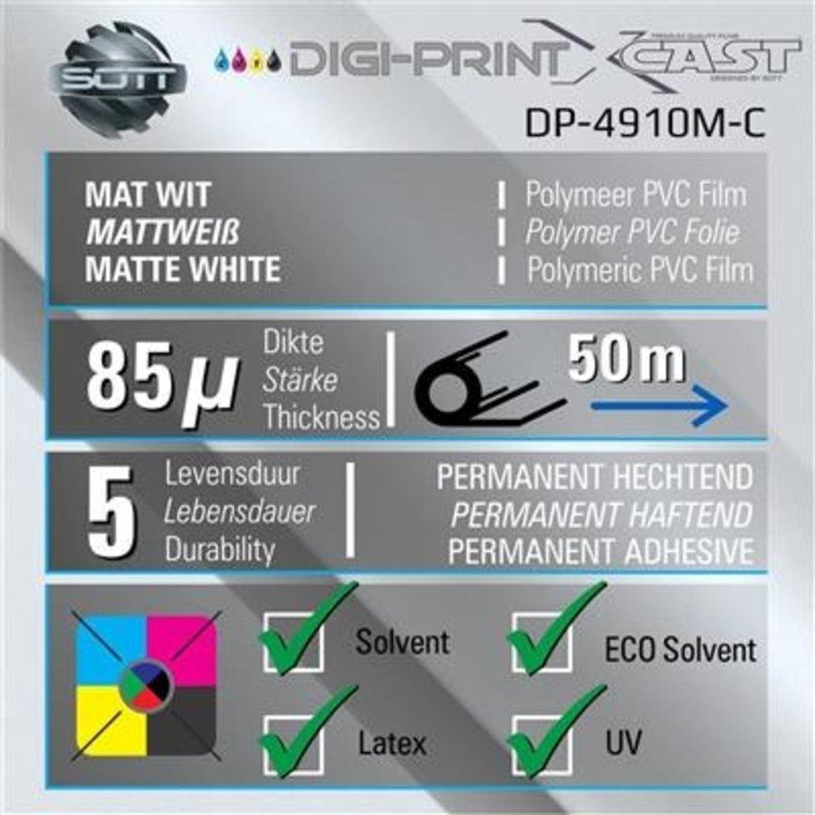 DP-4910M-C-137-2