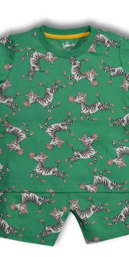 Woody Jongens-Heren pyjama, zebra groen all-over print