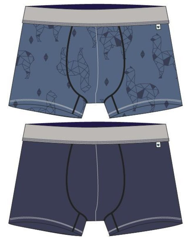 Woody Jongens-Heren short, set 4