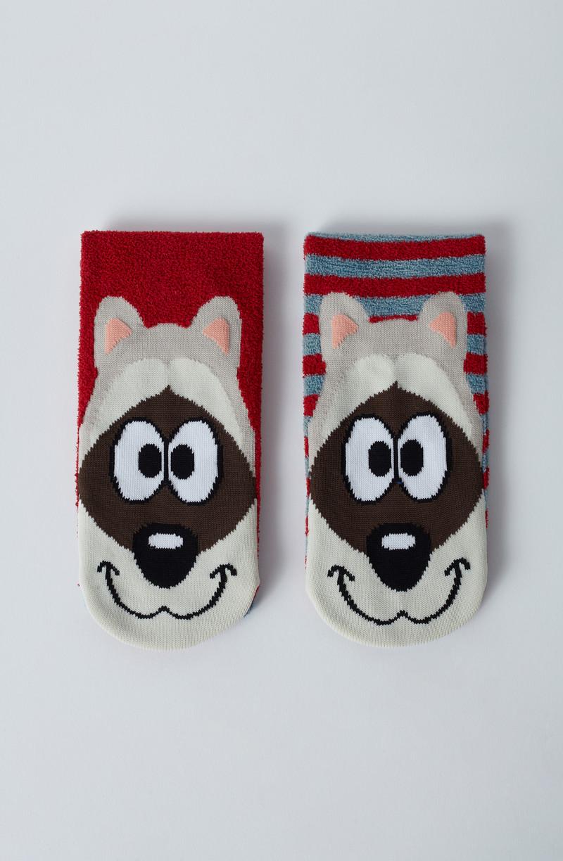 Woody Sokken, wasbeer