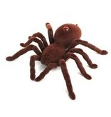 R/C Spider
