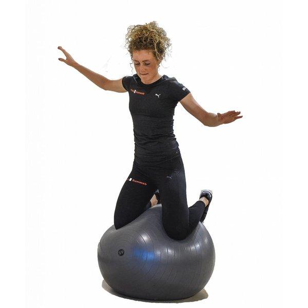 Pure 2 Improve Pure2Improve Fitness bal