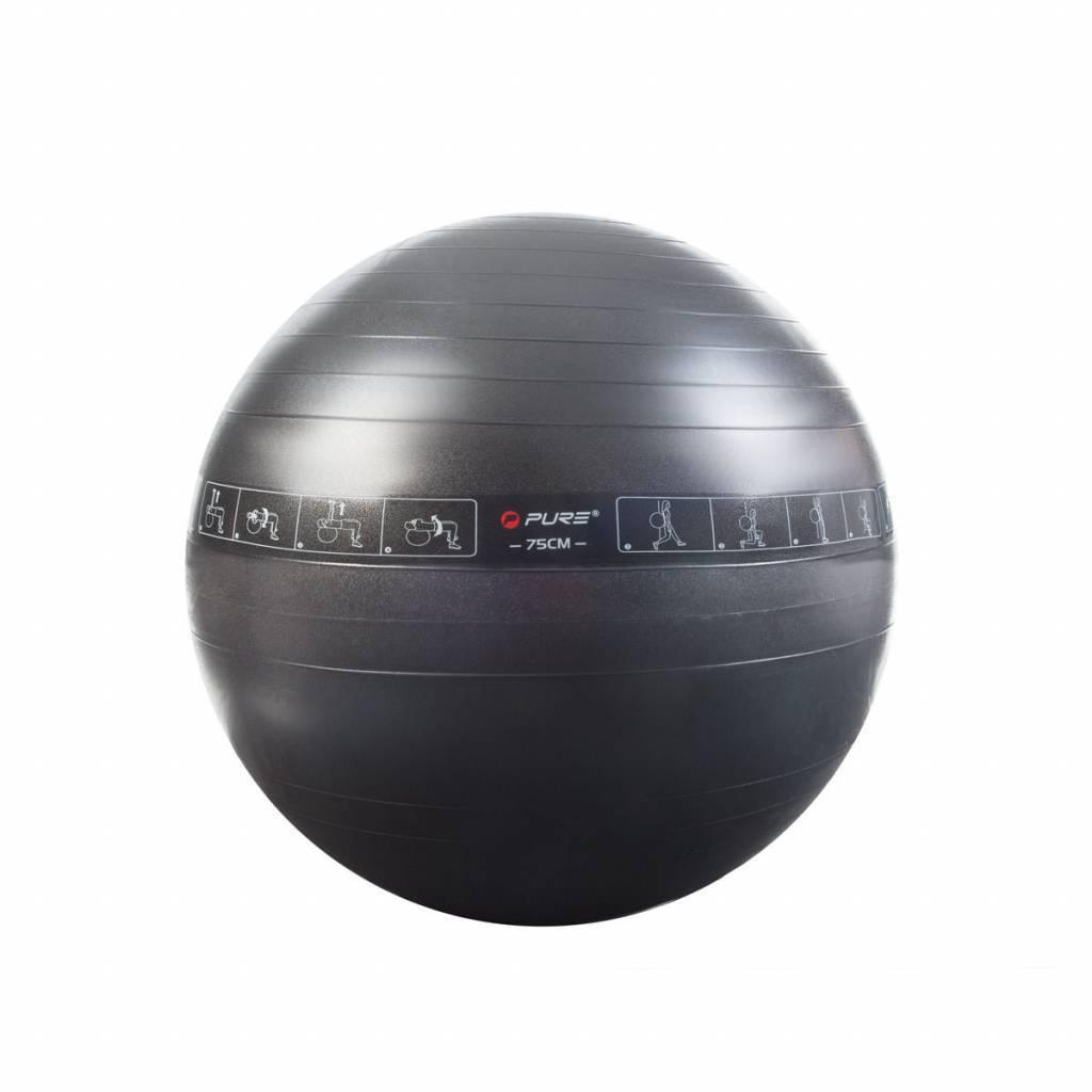 Pure2Improve Fitness bal-2