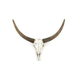 By-Boo Ox head skull