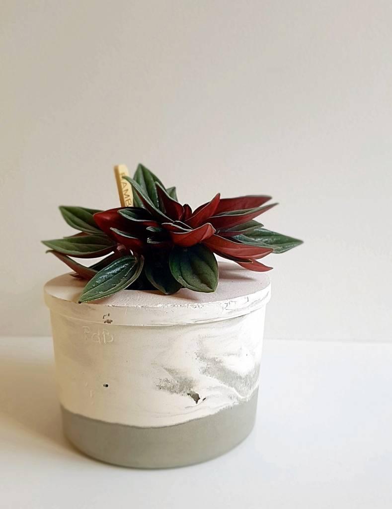Les Pieds de Biche Pot miniature marbre