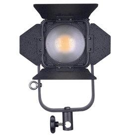Ledgo LEDGO - LG-D300C - Bi-Colour LED Fresnel Studio Light