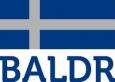 www.baldrshirts.nl