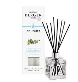Parfum Berger Fraîcheur D' Eucalyptus Parfumverspreider