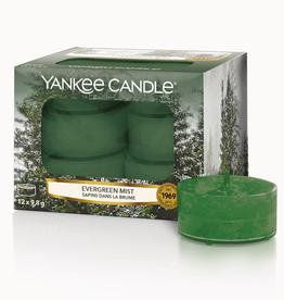 YC Evergreen Mist Tea Lights