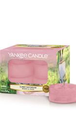 Yankee Candle Sunny Daydream Tea Light